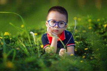 הרצאות העשרה בתחום התפתחות הילד
